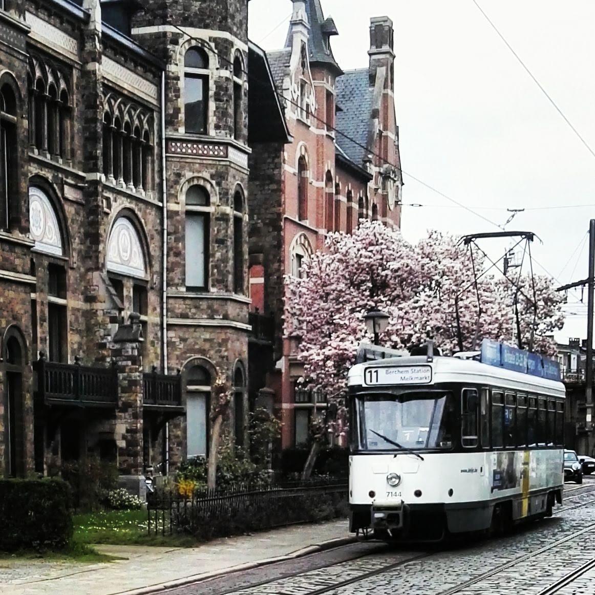 Cogels Osy lei, tram 11 Antwerpen
