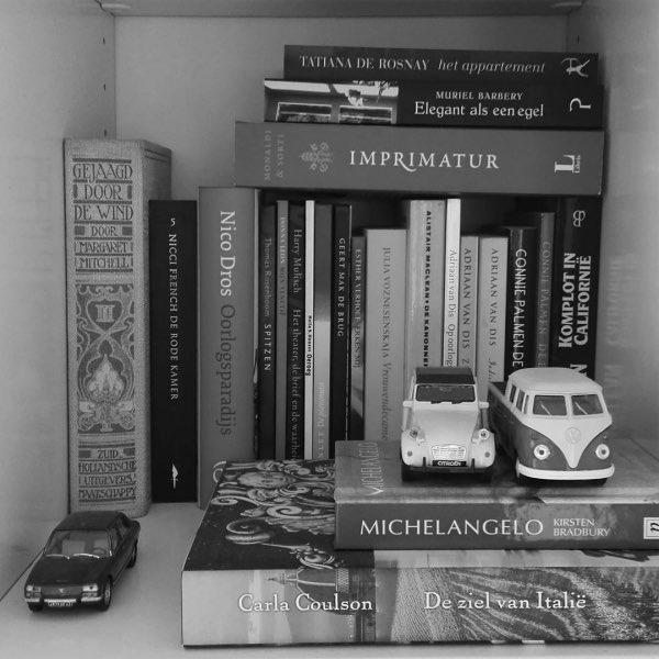 Een boekblog beginnen, kijk eens in je boekenkast
