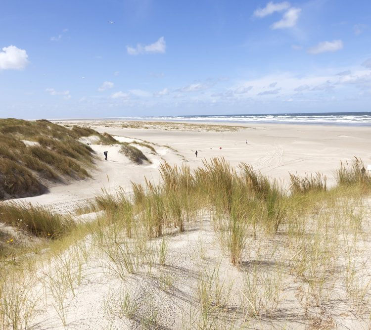 Wandelen door de duinen op Vlieland