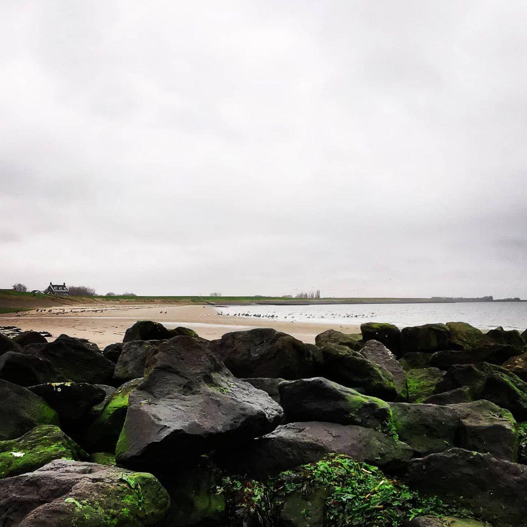 strand en stenen wandelen